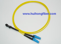 E2000 to MTRJ Fiber Optic Patch Cable